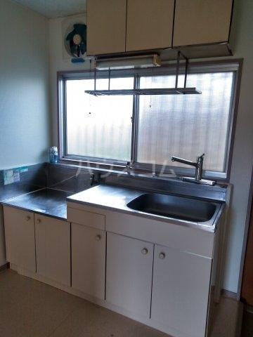 柿生サンハイツ 203号室のキッチン