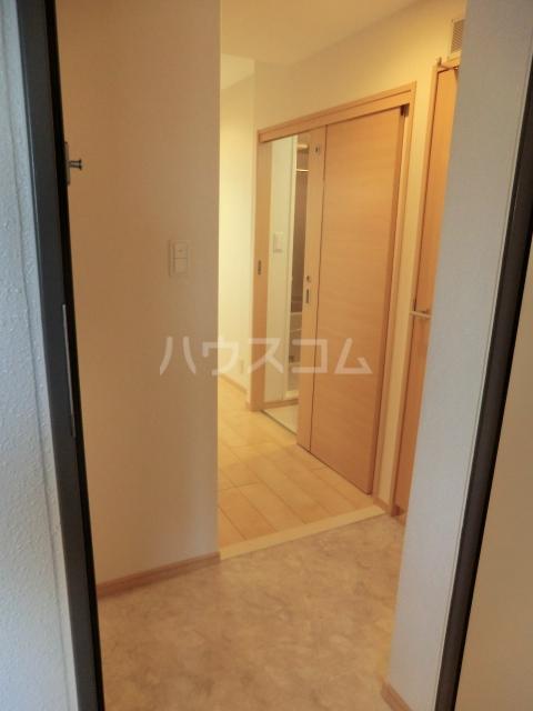 ルミエール 02050号室の玄関