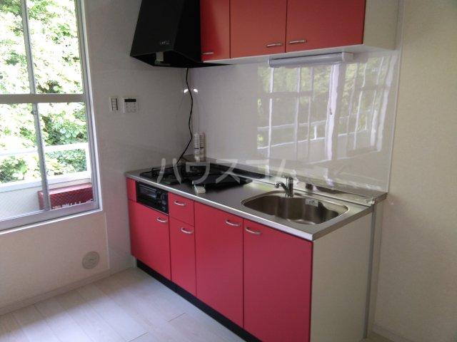サンタナハイツ 202号室のキッチン