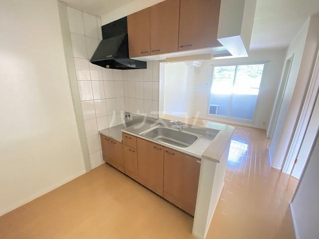 フォレストコムス 202号室のキッチン