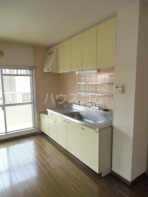 ヒルサイドアライ 305号室のキッチン