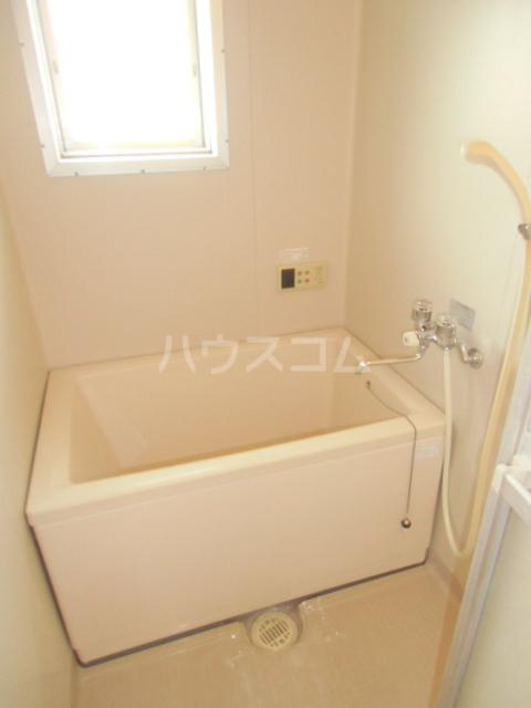 ヒルサイドアライ 305号室の風呂