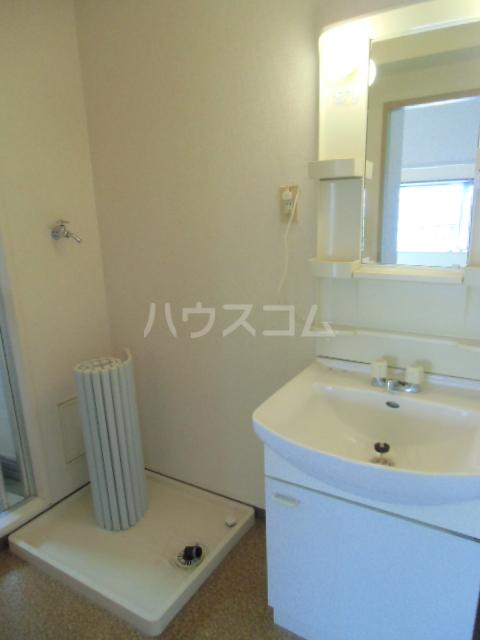 ヒルサイドアライ 305号室の洗面所