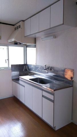 シャトー伊澤 202号室のキッチン