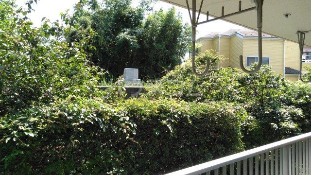 湘南サンハイツ 103号室の景色