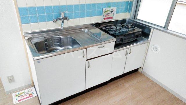 メゾン湘南 202号室のキッチン