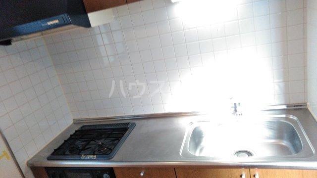 プリマベーラ 102号室のキッチン