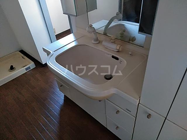 スカイコート 306号室の洗面所