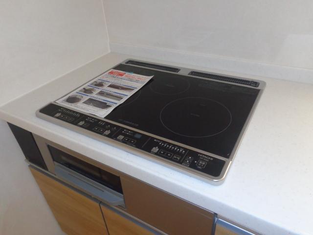 Plumeria(プルメリア) 206号室のキッチン