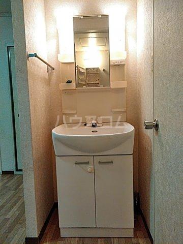 ライトタウン宮久保C棟 105号室の洗面所