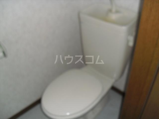 ハイツリバーサイド 201号室のトイレ