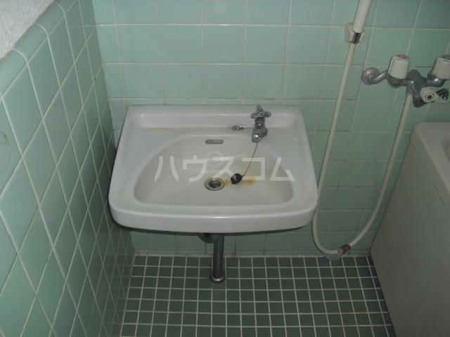 ハイツリバーサイド 201号室の洗面所