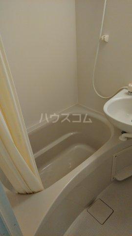 サンピア平塚 203号室の風呂