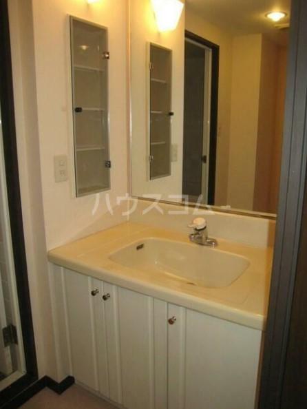 ライオンズガーデン海老名 410号室の洗面所