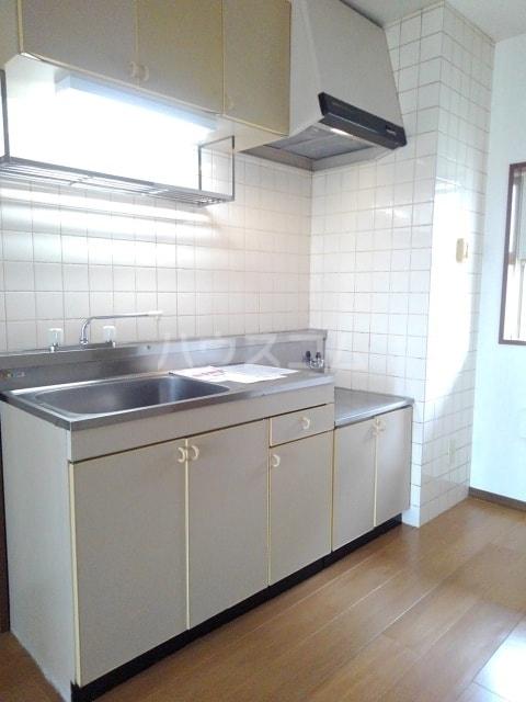 グリーンプラザ 01040号室のキッチン