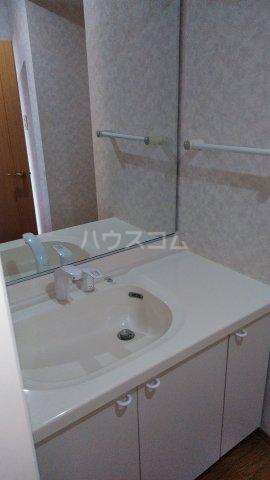 ローヤルシティ白岡 1103号室の洗面所