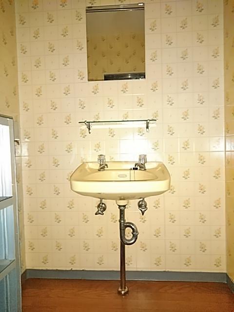 メゾン ド ジュエル 301号室の洗面所
