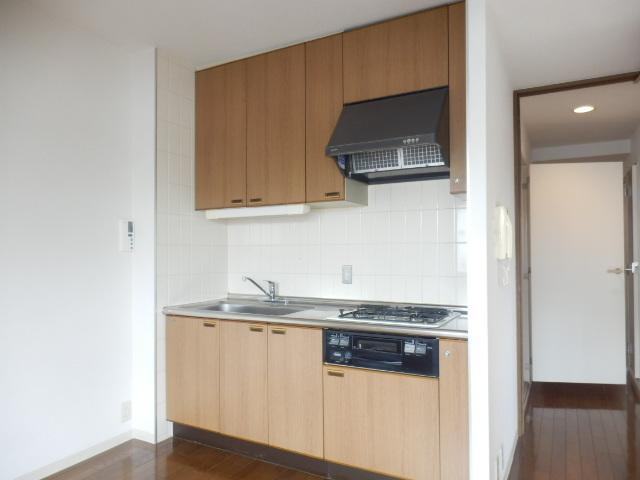 グレイスコート多摩川 202号室のキッチン