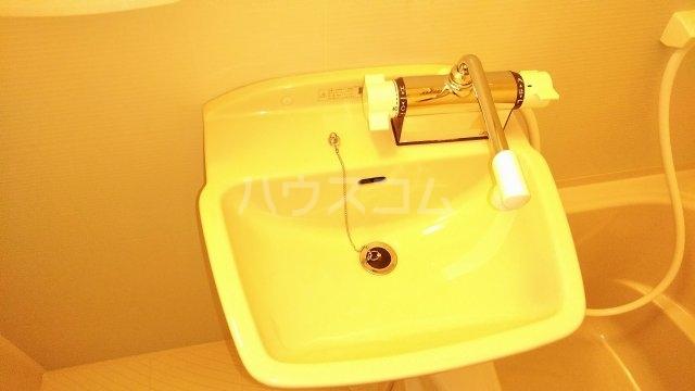 YS鶴見 402号室の洗面所