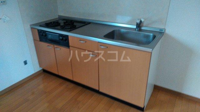 ベイグランド・サワノ B-202号室のキッチン