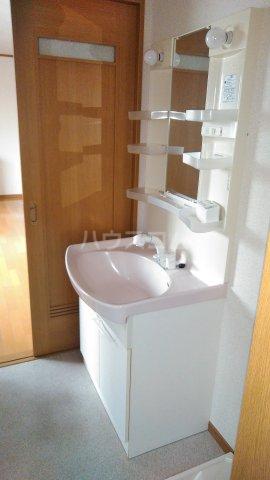 ベイグランド・サワノ B-202号室の洗面所