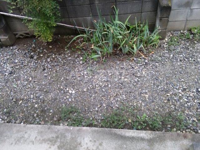 メゾンタケノウチ 102号室の庭