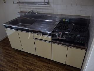 アドバンス一号館 306号室のキッチン