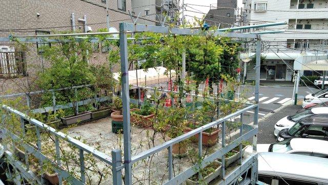 池田荘 5号室の景色