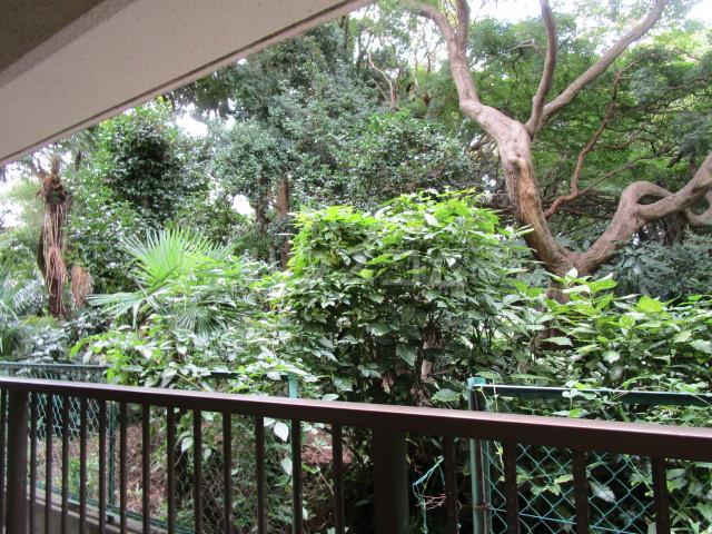 国分寺YSマンション 102号室の景色