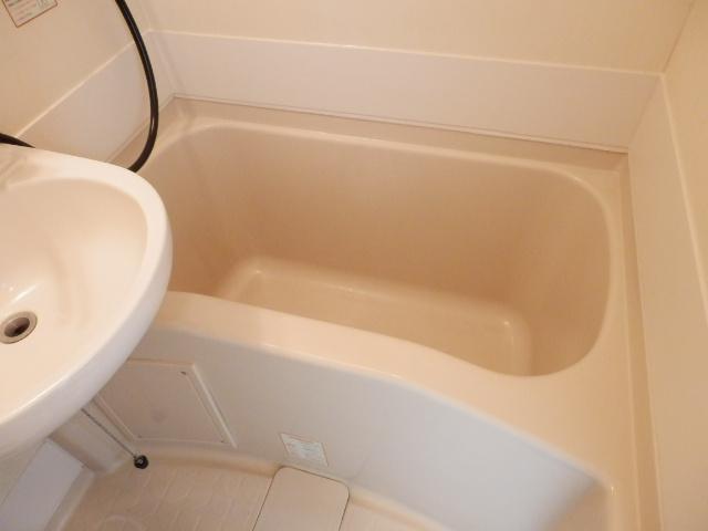 ハイツベルグ武蔵 202号室の風呂