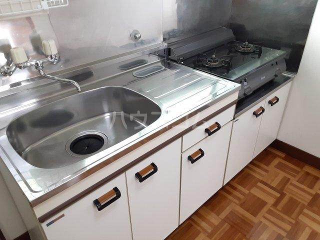 サンシャインビレッジ 202号室のキッチン