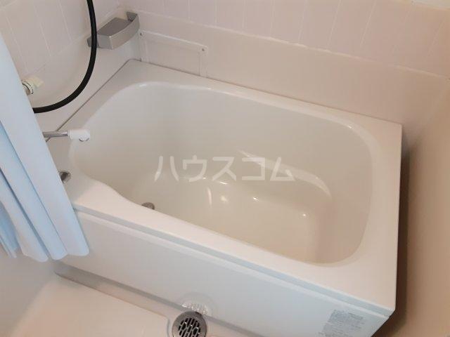 サンシャインビレッジ 202号室の風呂