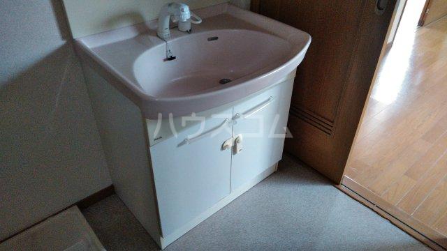 ベイグランド・サワノ B-103号室の洗面所