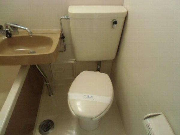 第3泉ハイツ 105号室のトイレ