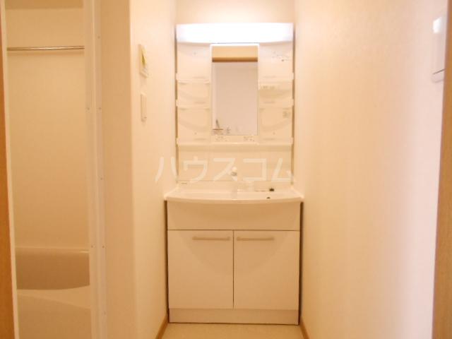 チェリニー国立 102号室の洗面所