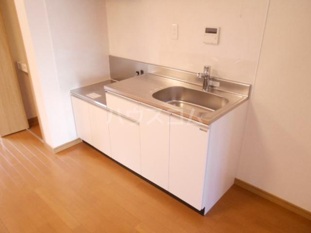 チェリニー国立 102号室のキッチン