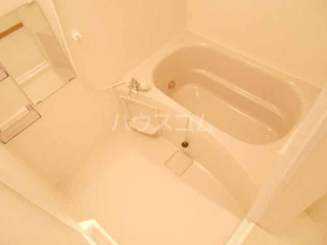 チェリニー国立 102号室の風呂