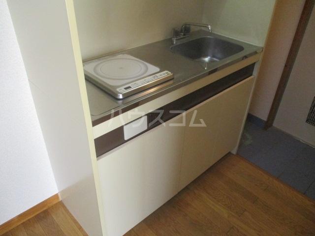 エイペックス新丸子 201号室のキッチン