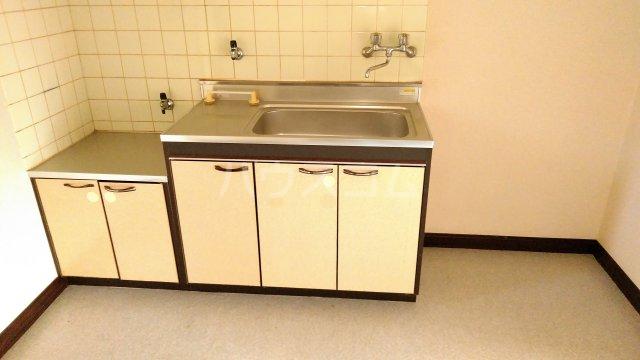 スカイコーポ 202号室のキッチン