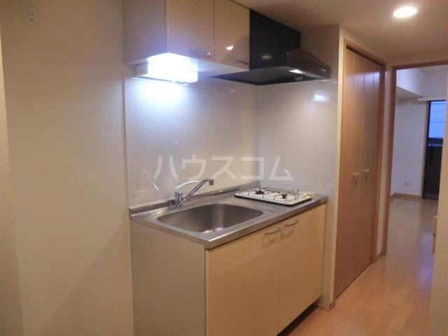 レジオス池上 203号室のキッチン