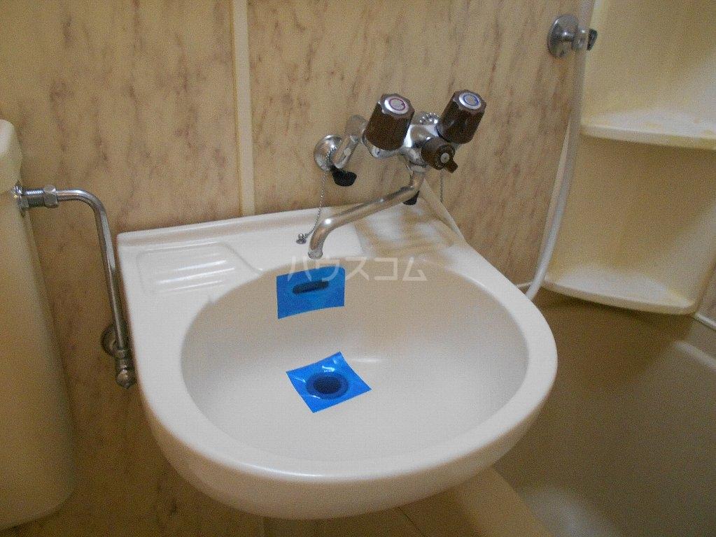 ラ・レジダンス・ド・ポローニア 307号室の洗面所