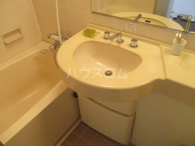 LANAI COURT1596 401号室の洗面所