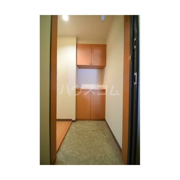 ウイステリア 202号室の玄関