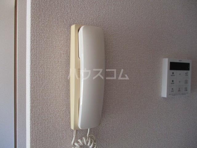 ロイヤルガーデン・アネシスC 102号室のセキュリティ