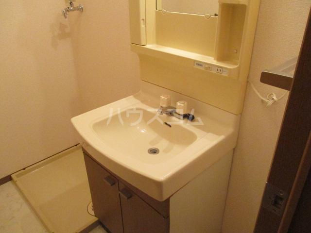 ロイヤルガーデン・アネシスC 102号室の洗面所