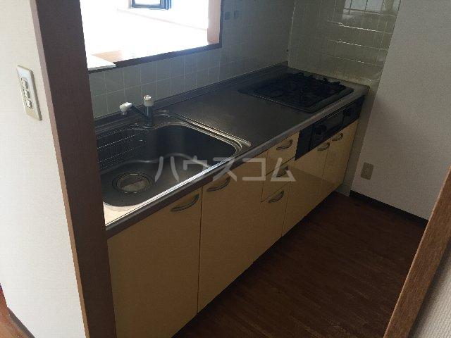サニーシャトー 302号室のキッチン