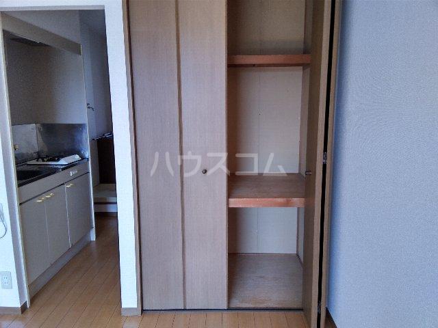 ELVITA 206号室の収納
