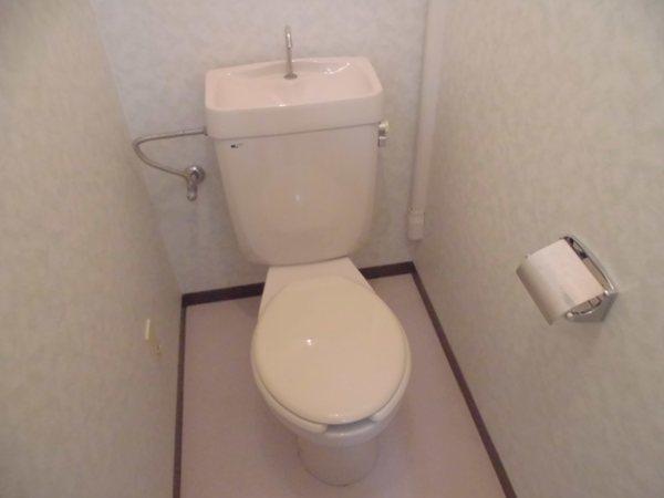 アーバンホーム ワン 301号室のトイレ