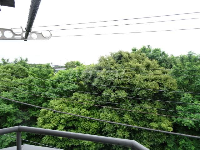 ランディー新浦安 307号室の景色