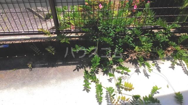 アイコーサンハイツⅠ 207号室の庭